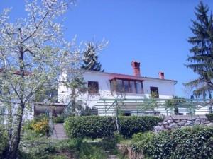 nono_property_draga_house_exterier_2
