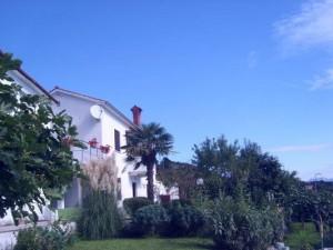 nono_property_draga_house_exterier_9